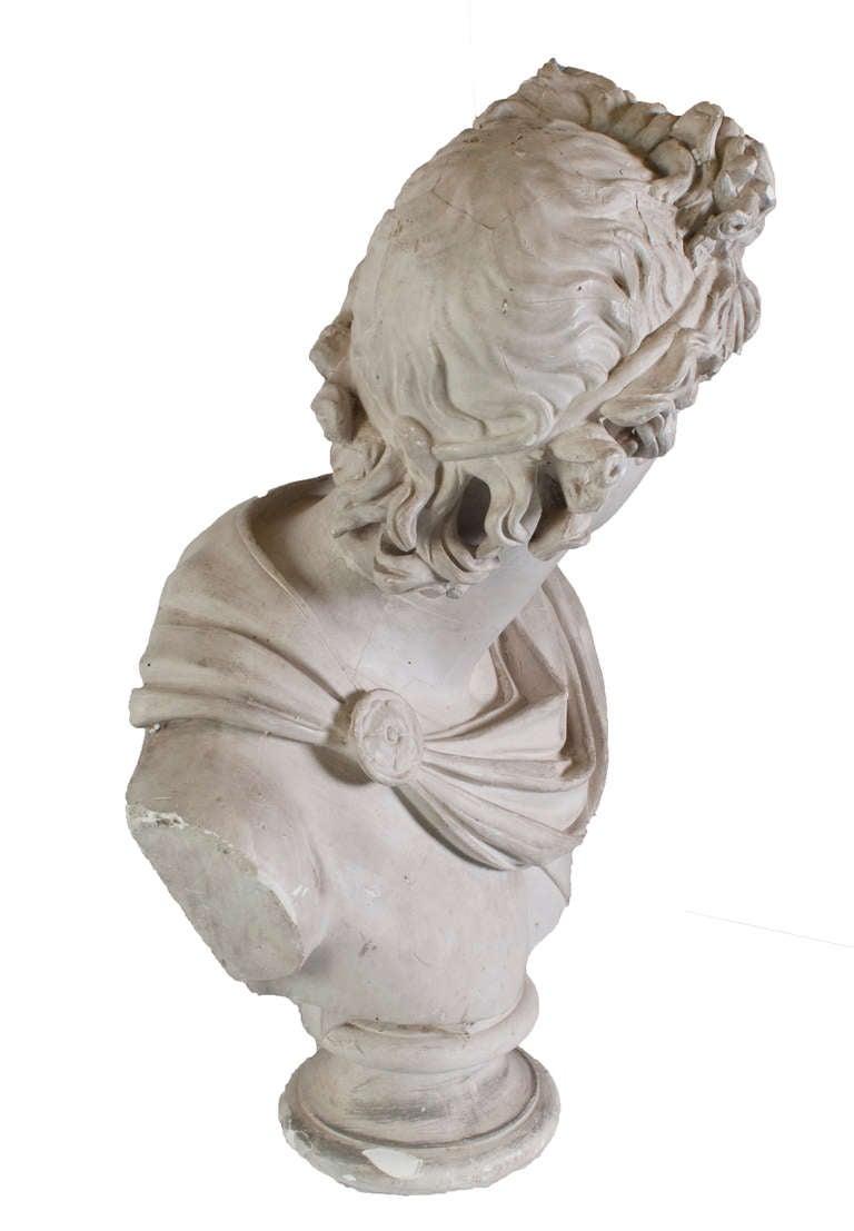 Plaster Head of Apollo For Sale