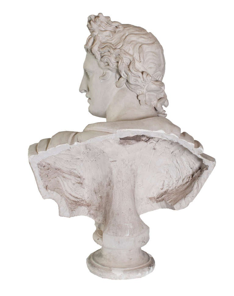 Plaster Head of Apollo - a copy of Apollo Belvedere.  The original marble bust is in The Louvre in Paris.