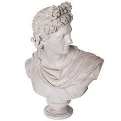 Plaster Head of Apollo
