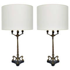 Pair of 19th Century Bronze and Marble Lamps