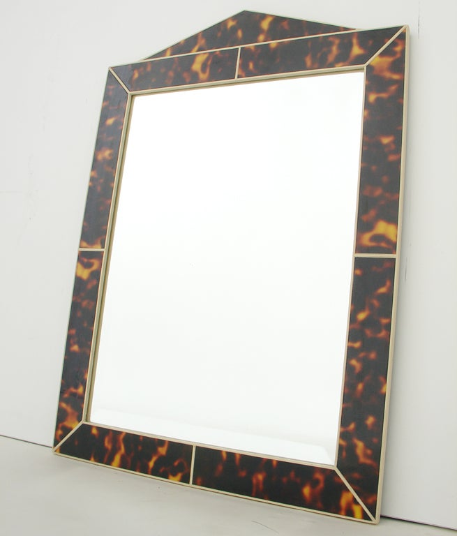 Faux Tortoise Shell Mirror 2