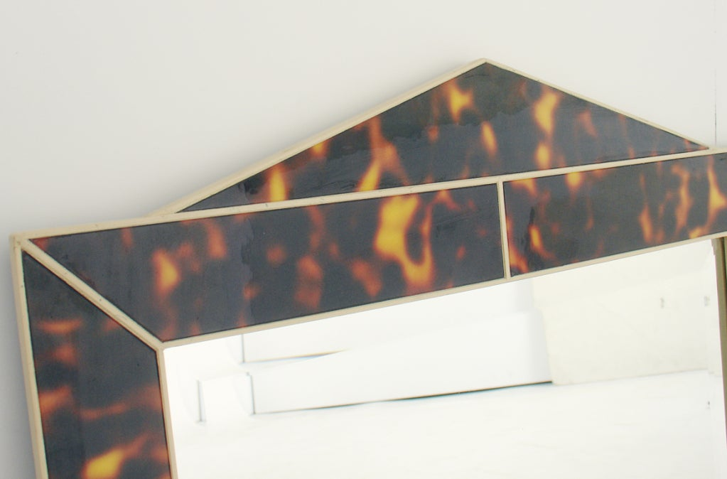 Faux Tortoise Shell Mirror 5