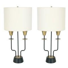 Pair of Elegant Modern Lamps
