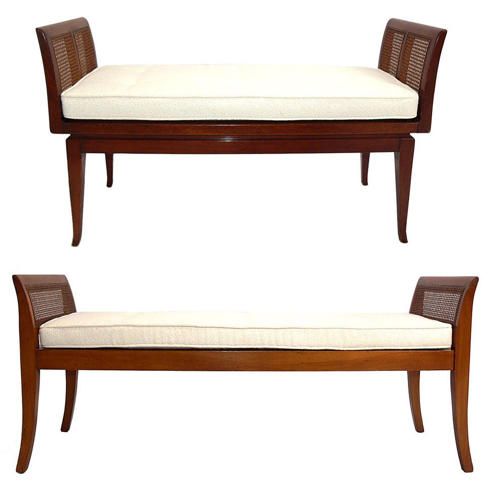 Selection of Modern Benches with Curvaceous Legs For Sale