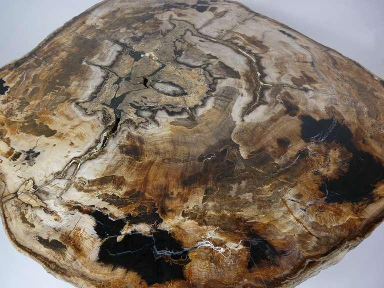 Rare Karl Springer Petrified Wood Coffee Table At 1stdibs