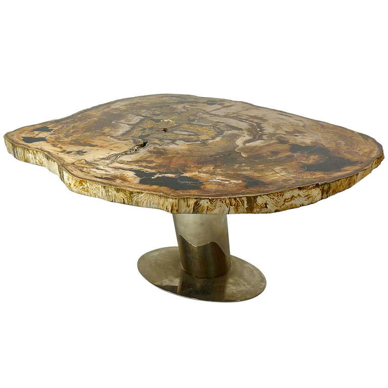 Rare Karl Springer Petrified Wood Coffee Table At 1stdibs