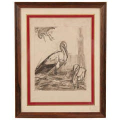 Early 19th Century Drawing of Storks