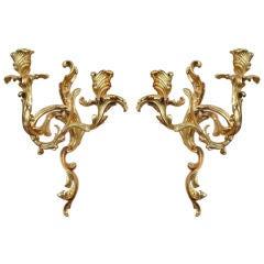Pair of Gilt Bronze Louis XV Sconces