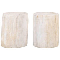 Pair of Petrified Wood Drinks Tables