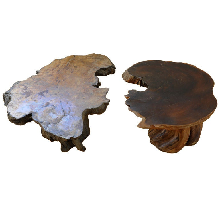 yin yang burl driftwood coffee table at 1stdibs