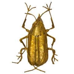 Vintage Beetle Sconce