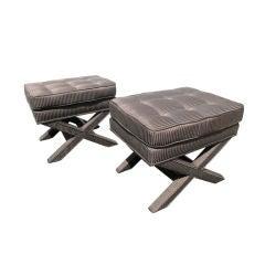 X bench  pair  (2)