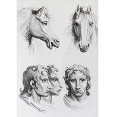 Relationship of the Human Figure with that of the Horse, Engraving
