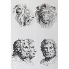 Relationship of the Human Figure with that of the Lion