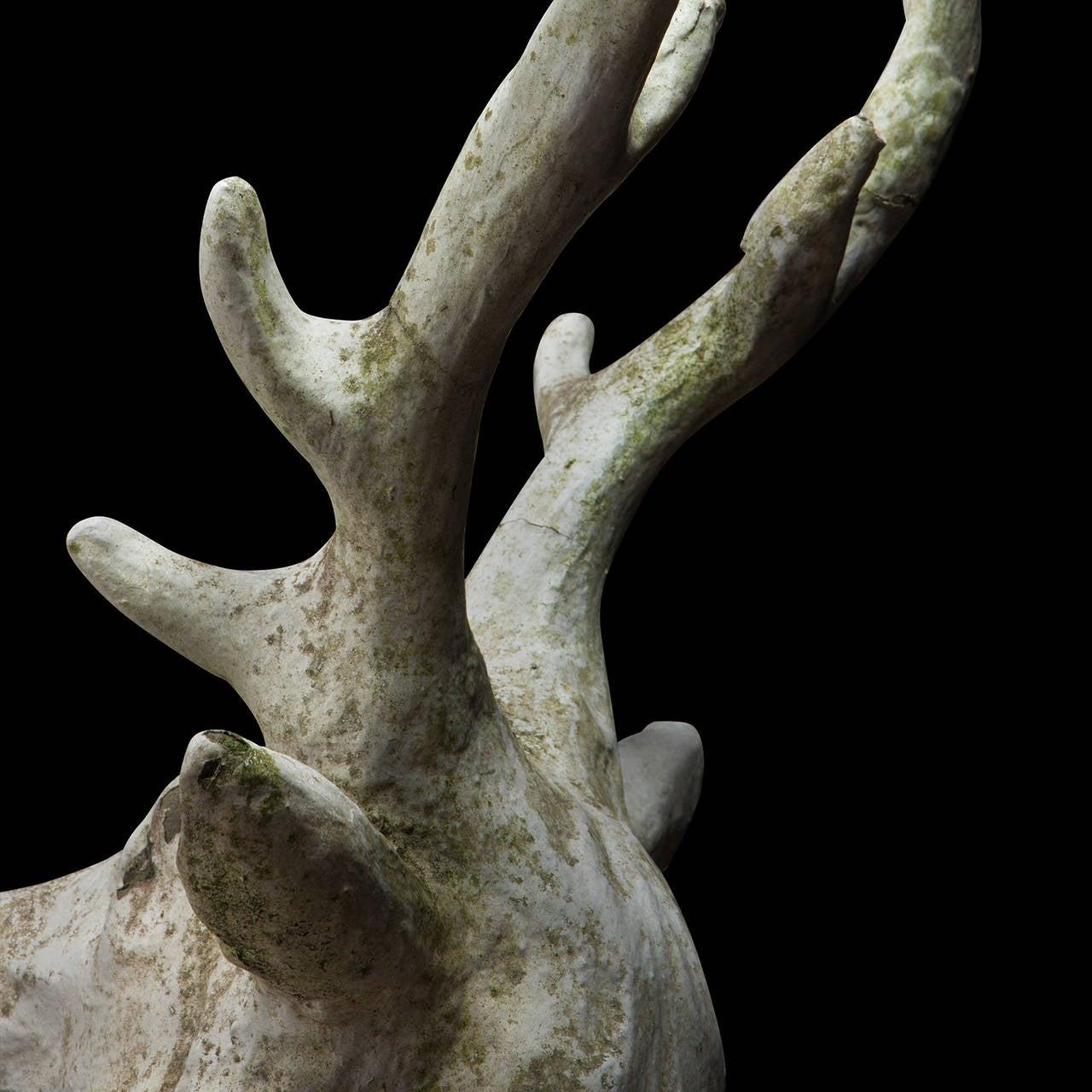 Concrete Deer Sitting Statue At 1stdibs