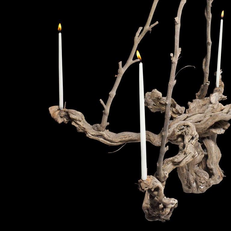 Vine Root Chandelier at 1stdibs