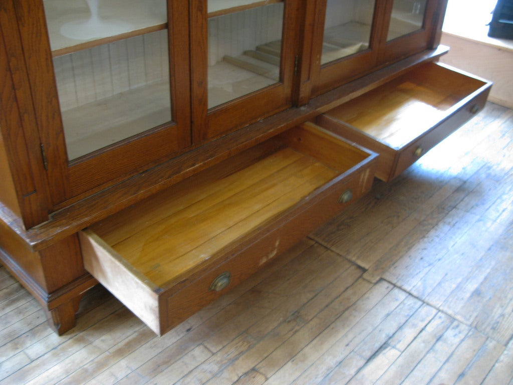 Antique Oak & Glass Collectors Display Case For Sale 1