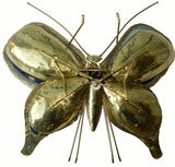 Butterfly Sconce / Table Lamp by HONORE thumbnail 5