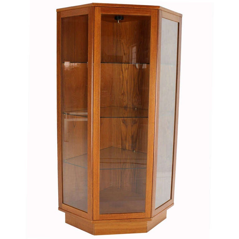 Danish Mid Century Modern Teak Corner Cabinet Cupboard For Sale