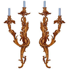 Exceptional Pair of Large Louis XV Style Gilt Bronze Wall Lights