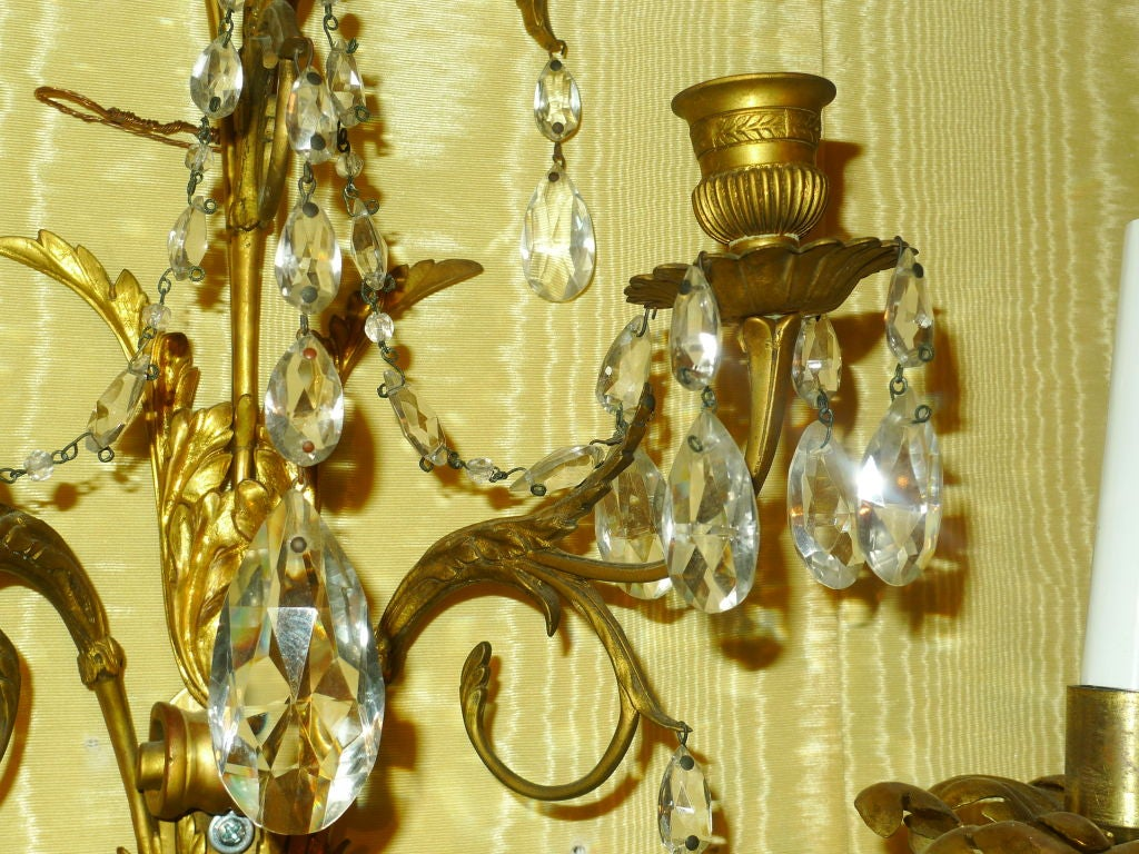 Pair of French Baltic/ Louis XVI Style Sconces 6