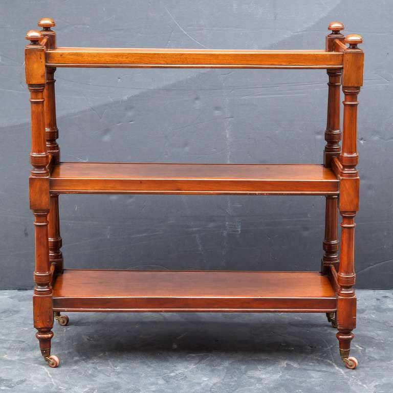 19th Century English Trolley Server in Mahogany For Sale