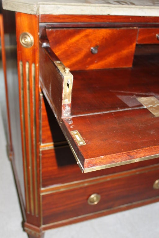 A Swedish Late Gustavian Mahogany Chest For Sale 1