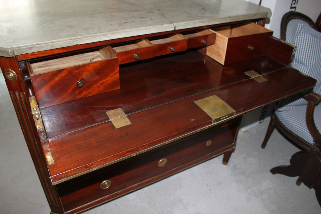 A Swedish Late Gustavian Mahogany Chest For Sale 2