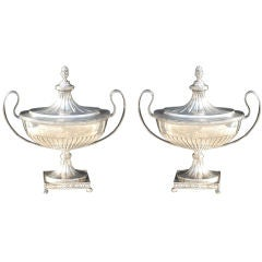 A Pair of Sugar Bowls in Swedish Plate