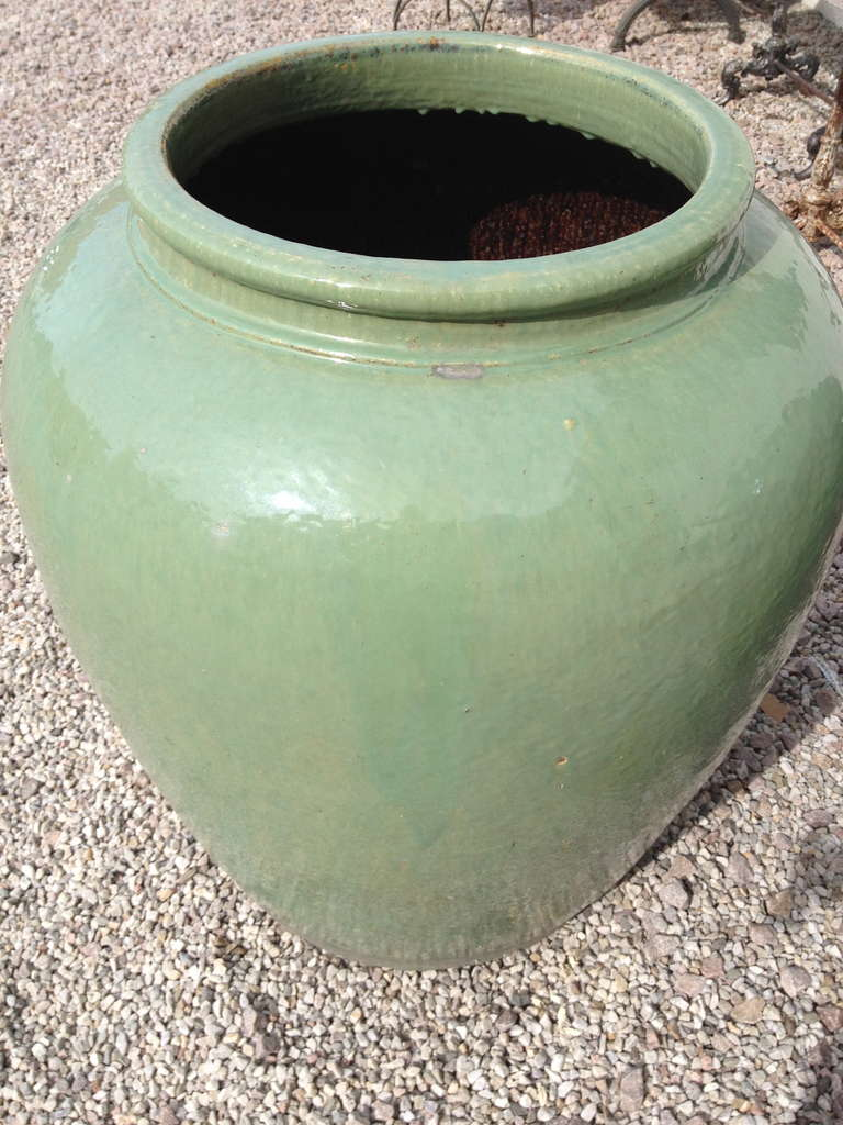 Empire Pair of Over Dimensioned Celadon Urns
