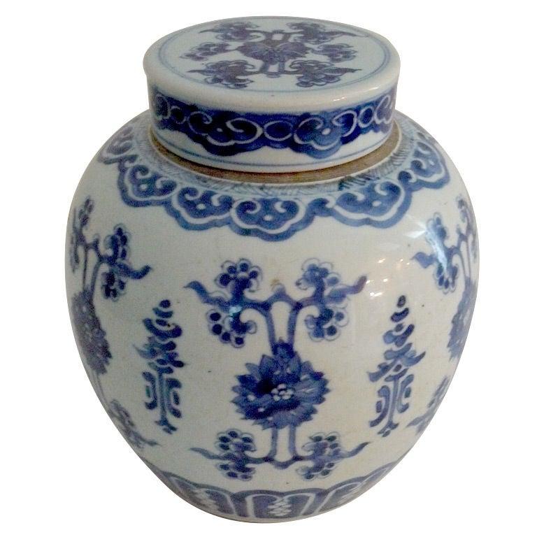 Oriental Ceramic Ginger Jar For Sale