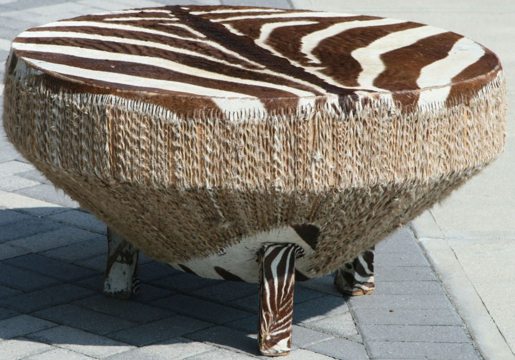 Large Stretched Zebra Hide Drum Coffee Table At 1stdibs