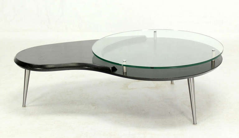 Mid Century Modern Organic Kidney Shape Elevated Glass Top Coffee Table 2