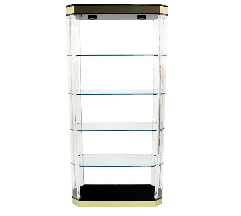 modern lucite brass etagere shelving shelf vitrine wall unit bookcase at 1stdibs. Black Bedroom Furniture Sets. Home Design Ideas