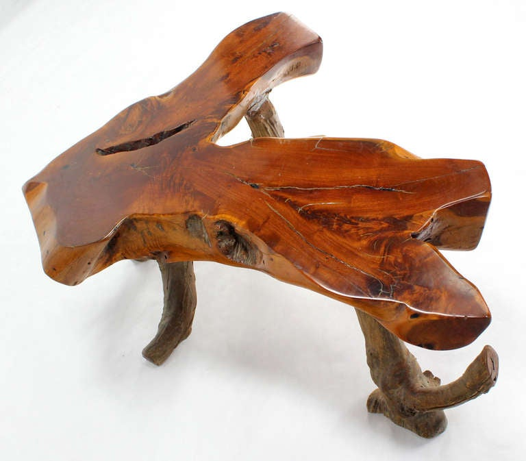 Driftwood Coffee Table Image 4