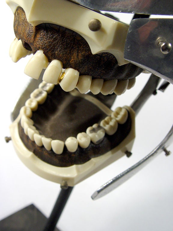 These striking dental mannequin is an example of what I personally like to collect. Think of the visual strength African, Oceanic, Indonesian or even American Indian masks project. I look at these unique medical objects as industry's tribal art.