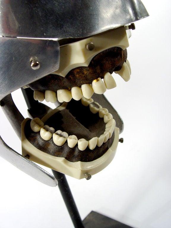 Aluminum Dental Teaching Mannequin 1
