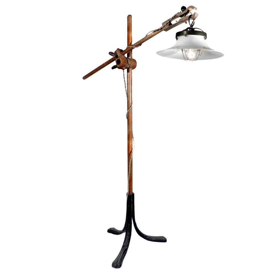 1800s X Ray Stand Floor Lamp At 1stdibs