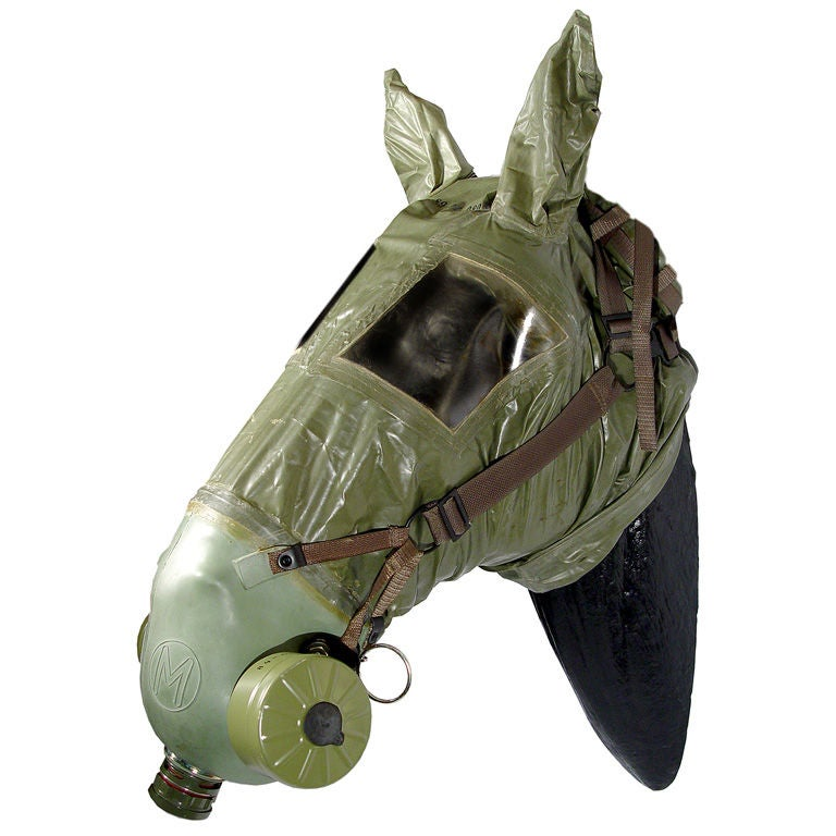 Horse Gas Mask