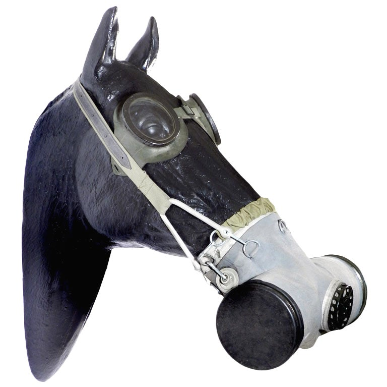 Horse Gas Mask 2 At 1stdibs