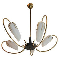 Mid Century French 1950 Chandelier