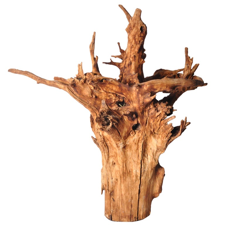 Wood Sculpture on Stand