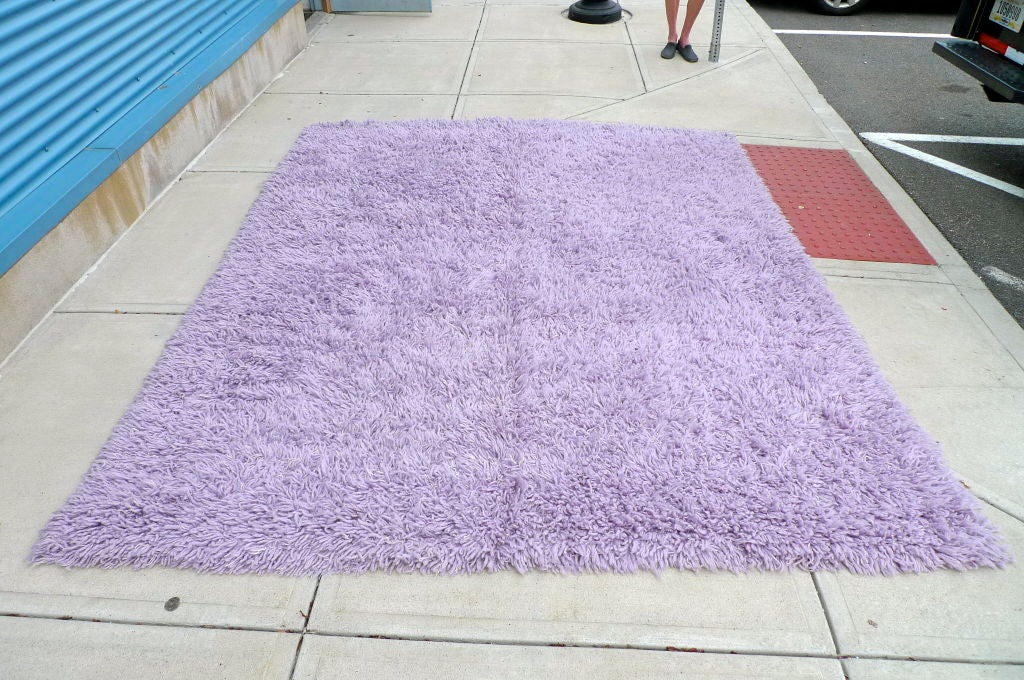 Purple Shag Rug 8 X 10 For Sale At 1stdibs