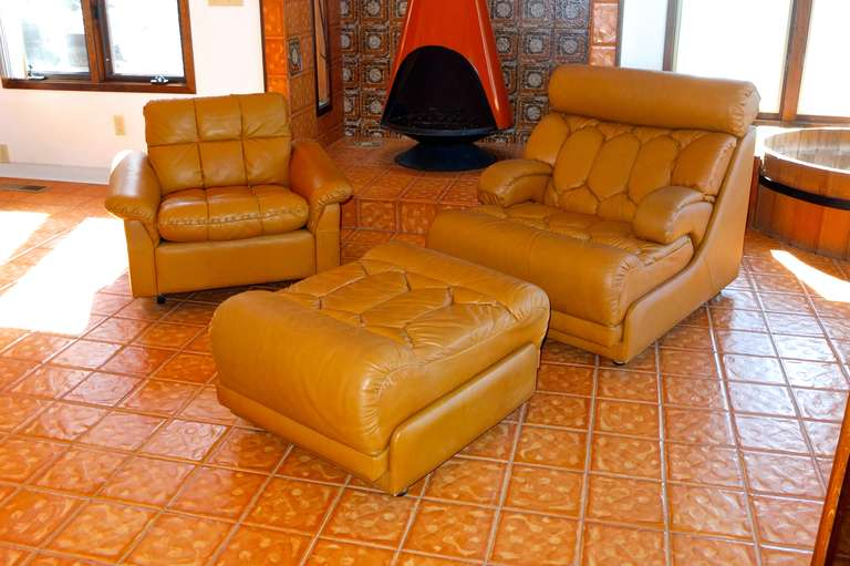 De Sede 1970's Leather Club Chair For Sale 3
