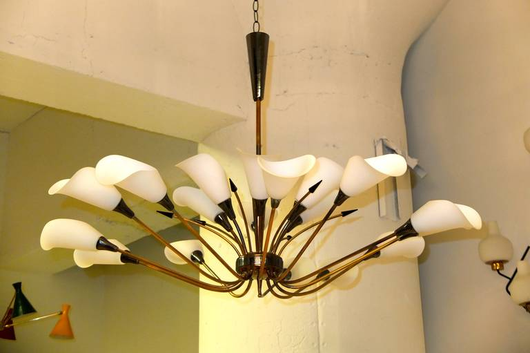 Monumental French 1950s EighteenArm Chandelier with Opaline Calla