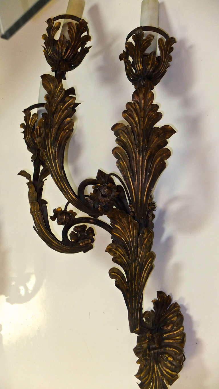 Palazzo Scale Italian Tole Sconces With Acanthus Leaves For Sale 2