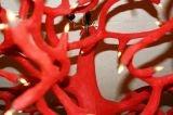 Amazing Organic Coral Chandelier image 8