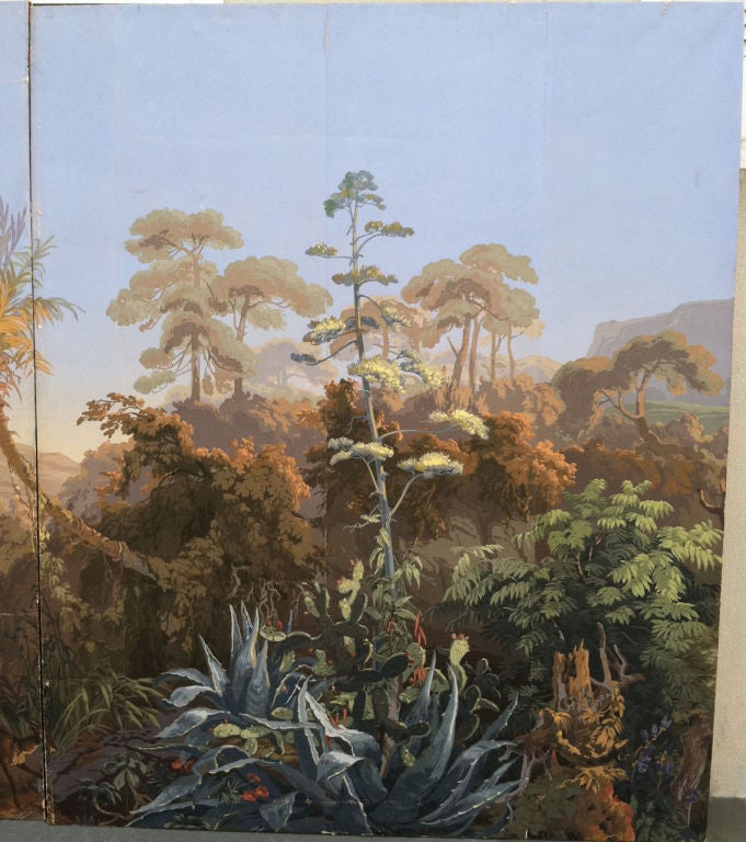zuber wallpaper panels les zones terrestres at 1stdibs