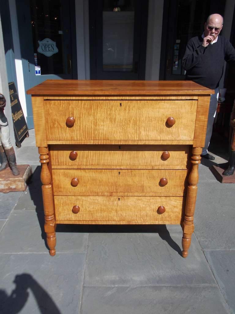 American Sheraton four drawer Tiger maple and Cherry chest of drawers with original Cherry knobs, turned bulbous columns, terminating on turned legs.  Early 19th Century