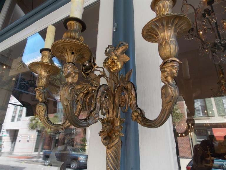 Pair of French Gilt Bronze Three Arm Sconces For Sale 3